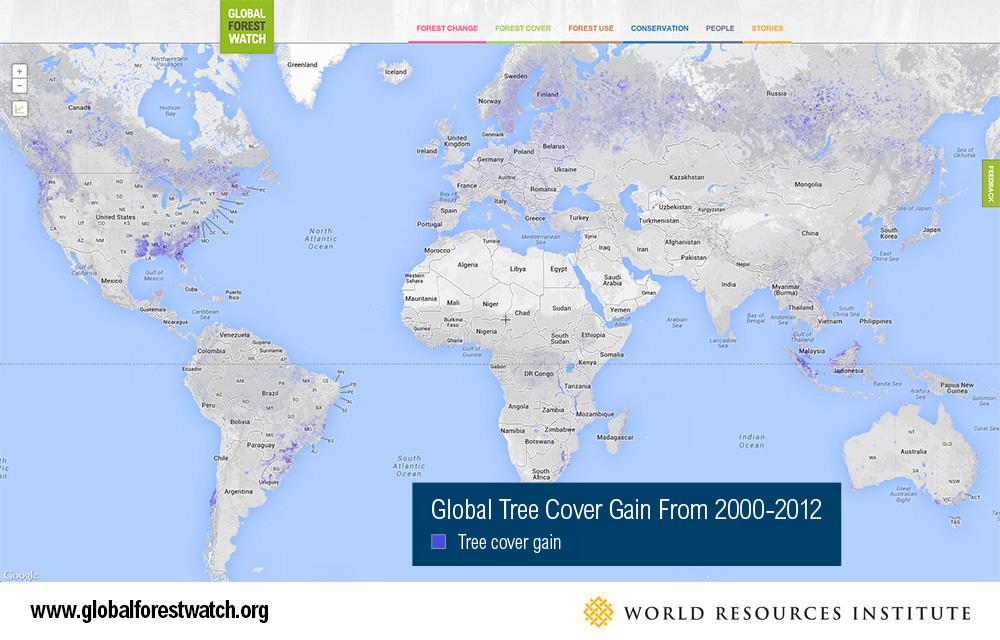 Global Tree Cover Gain
