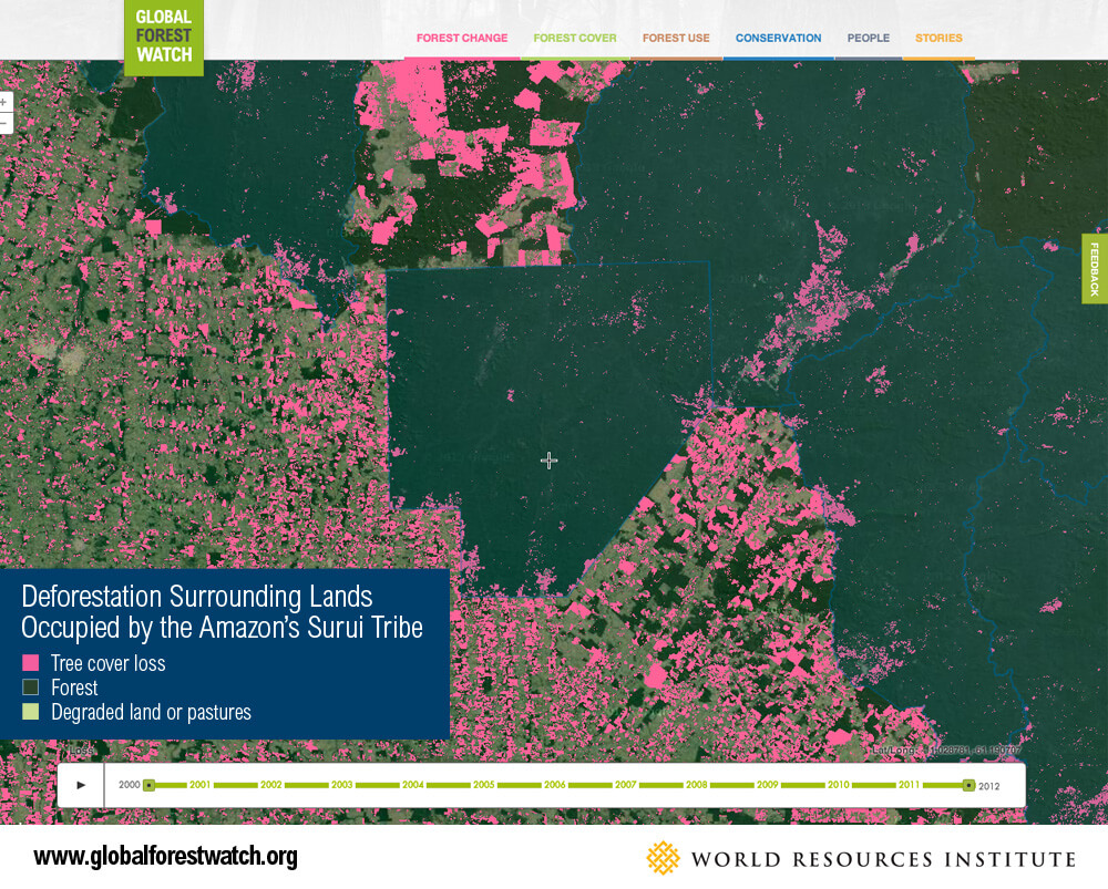 Map of Global Forest Watch in Brazil