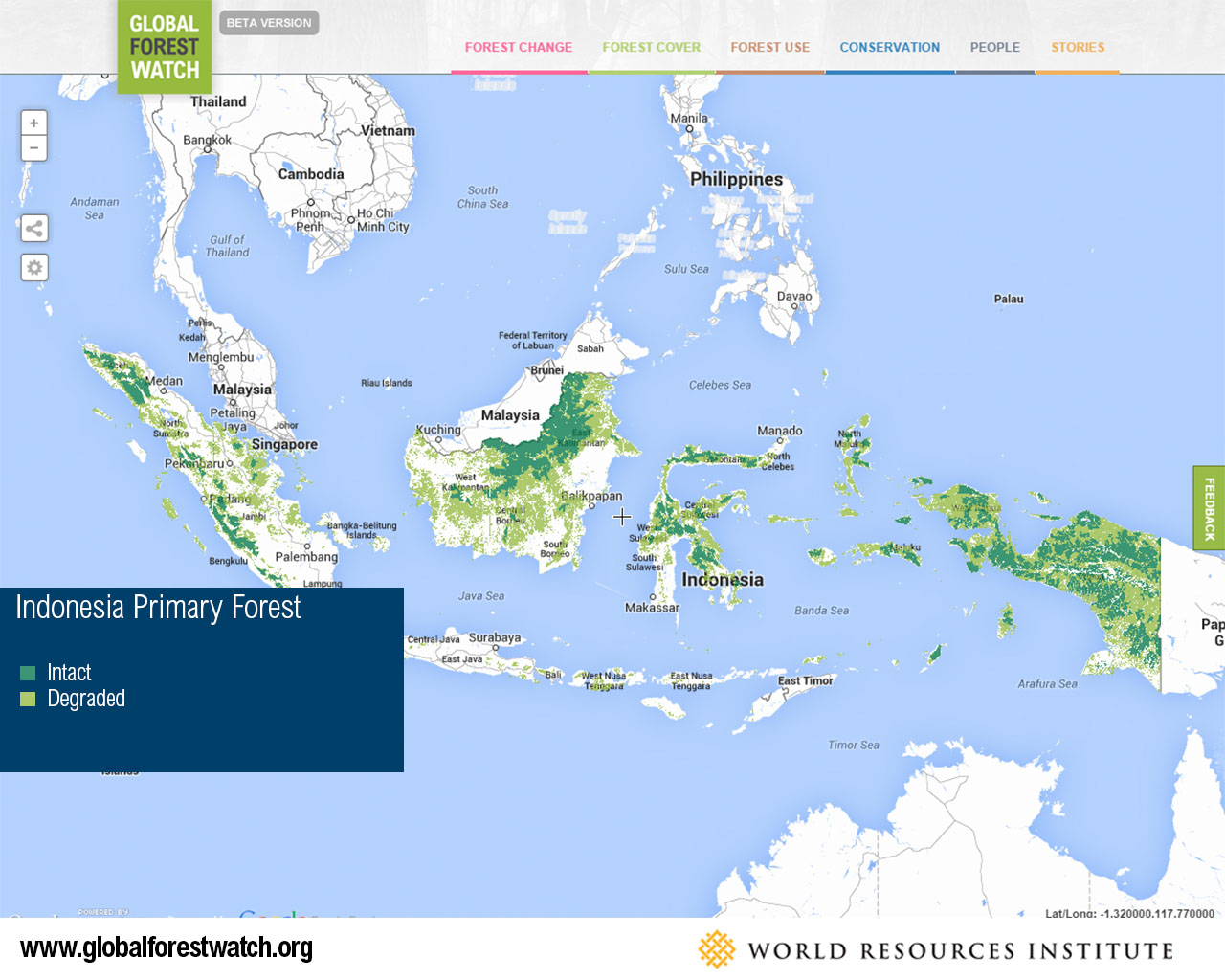 Indonesia Primary Forest