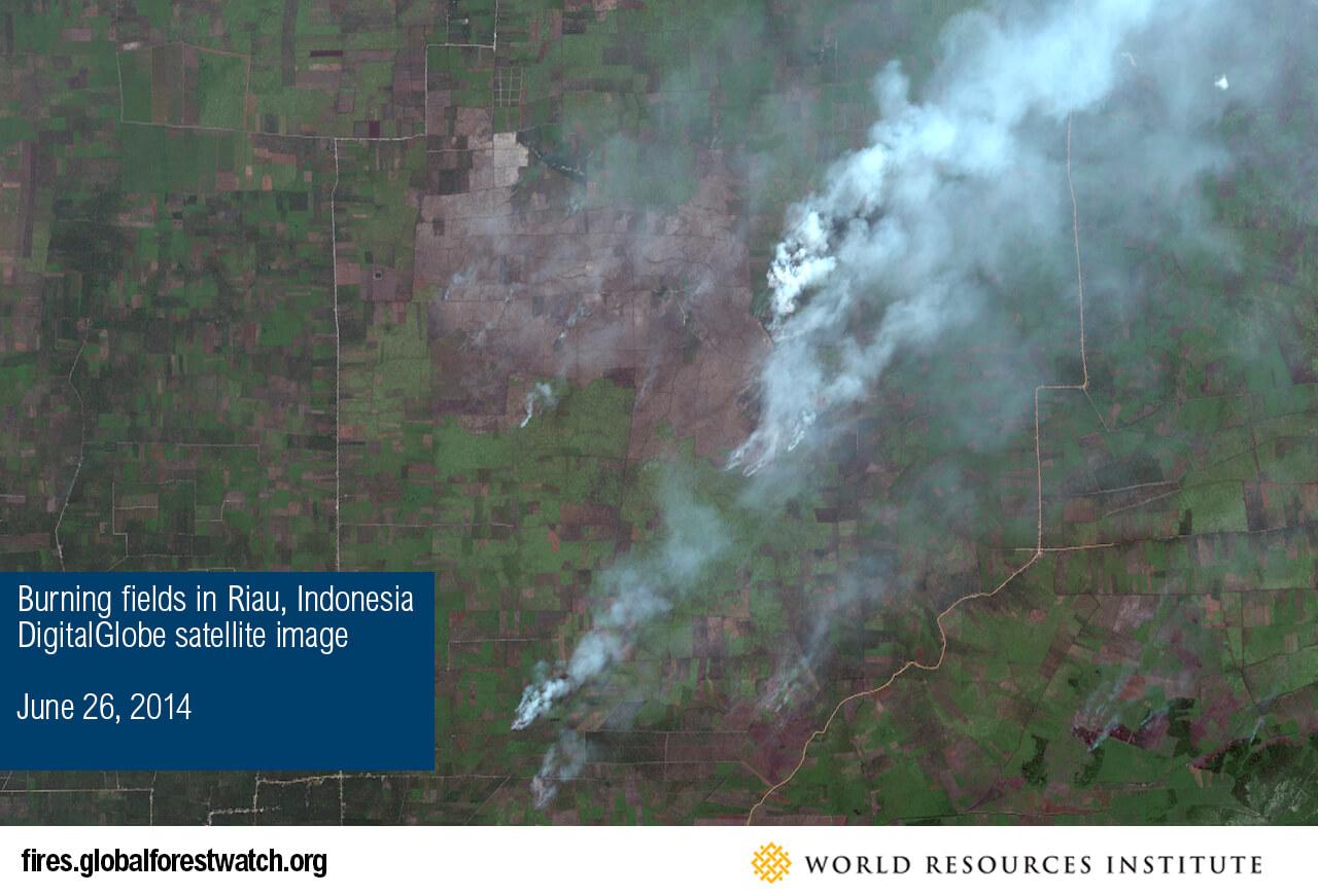 Burning fields in Riau, Indonesia