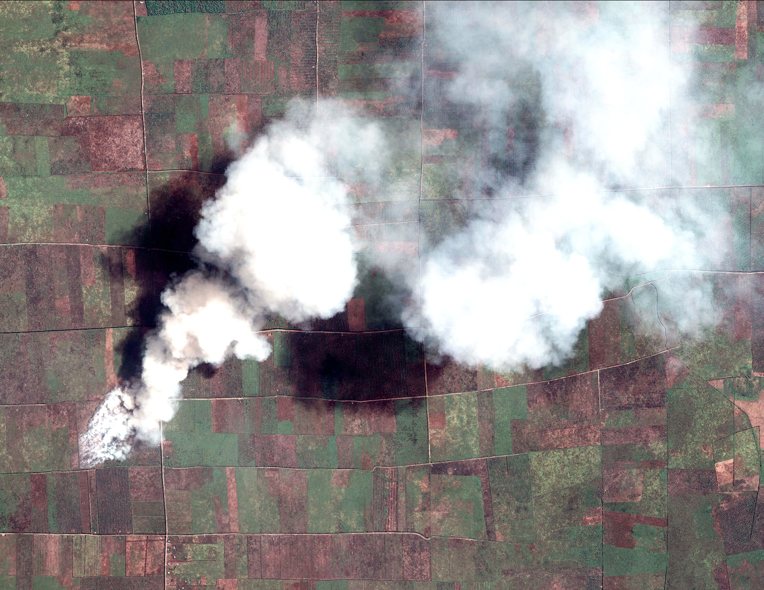 Agricultural fire in Sumatra, Indonesia, made available through a partnership between Global Forest Watch Fires and Digital Globe.
