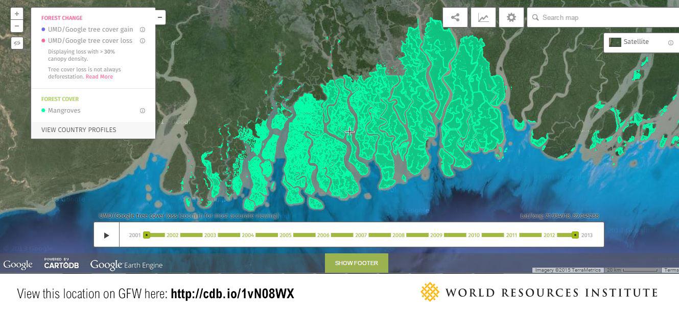 Sundarbans