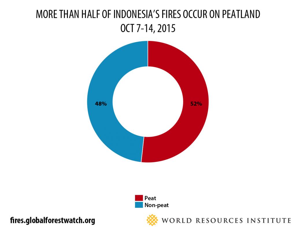 peat fires oct 7-14 2015