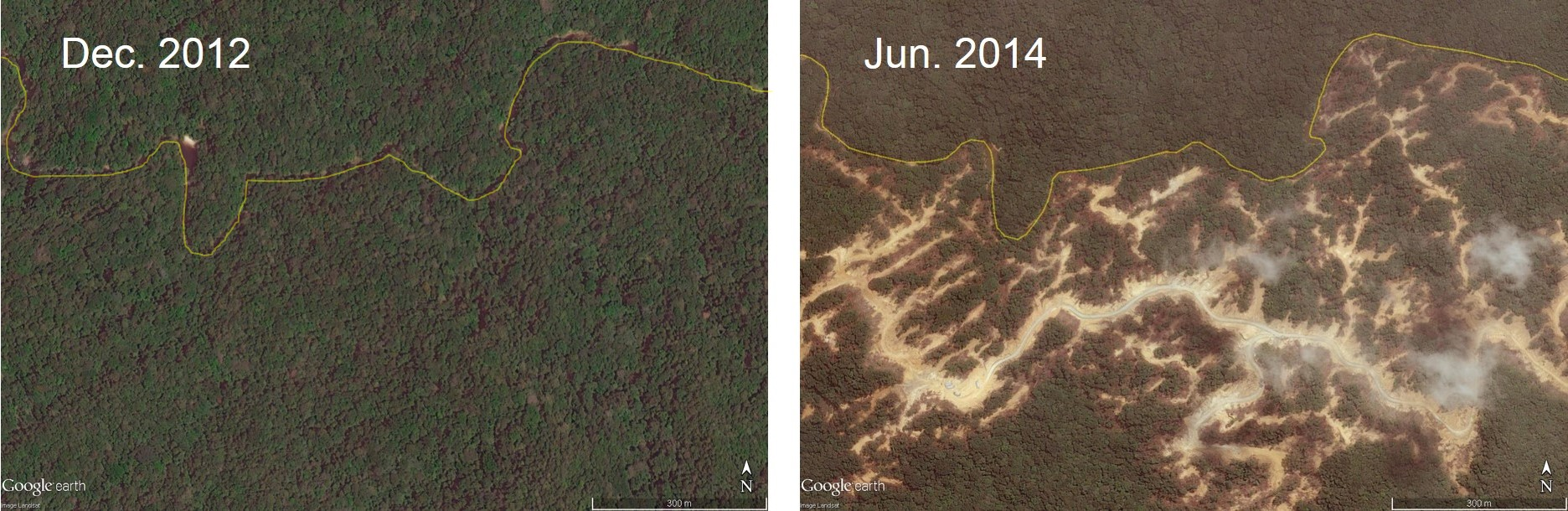Satellite images of deforestation in Shin Yan T/3342 concession. Sarawak logging